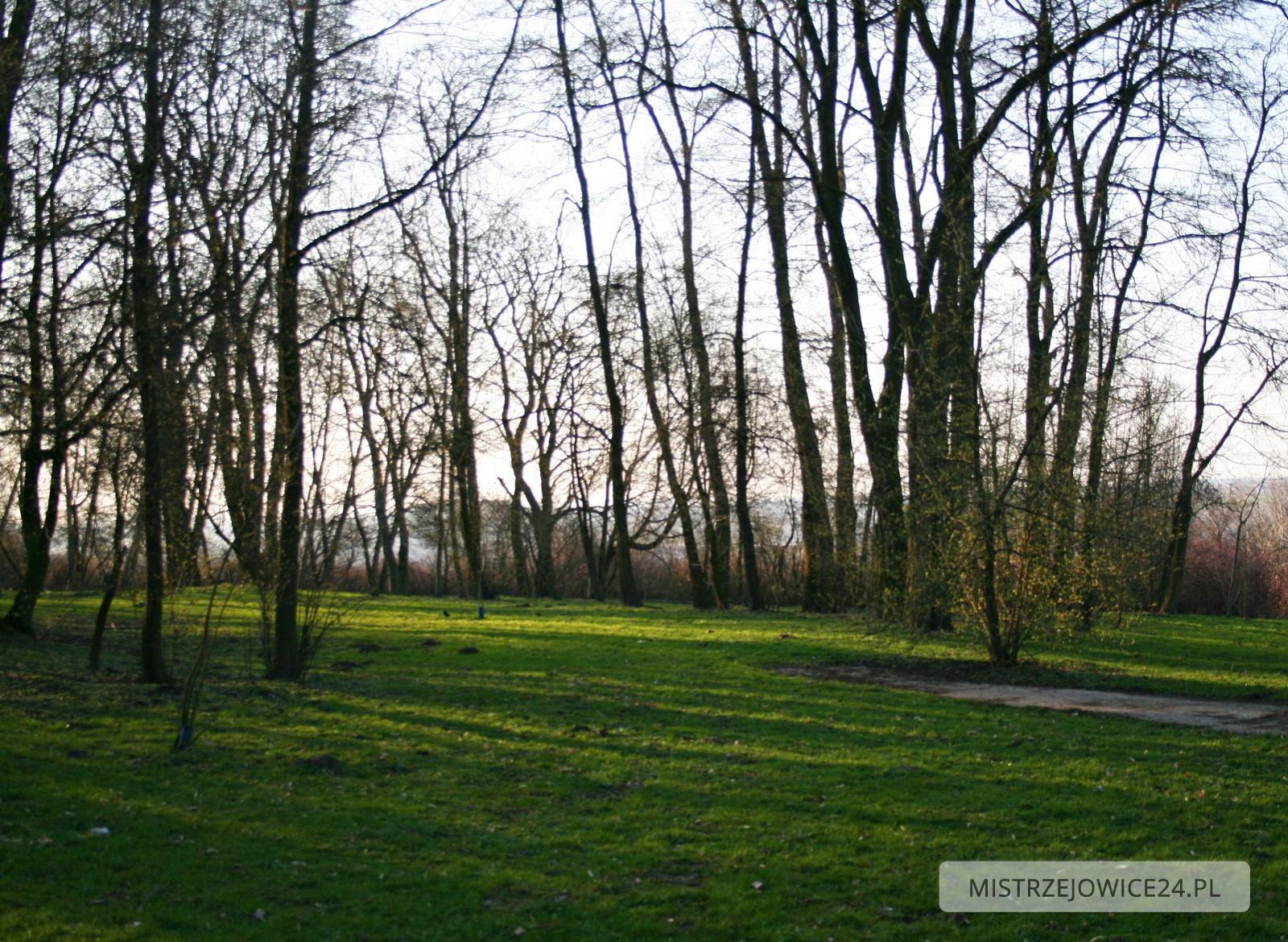 Park przy os. Złotego Wieku Fot.: Kobiecym Okiem Uchwycone / Paula (www.facebook.com/pieknocodziennosci)