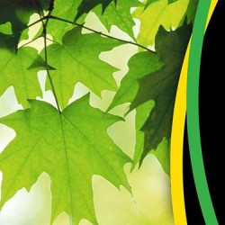 Reduta Park Kultur Regionu - prezentacja projektu i otwarta debata