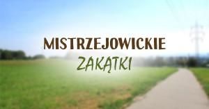 miejsca-w-mistrzejowicach-40