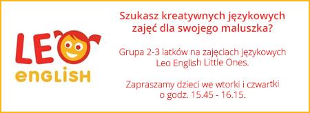 banner-leo-school1