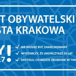 Budżet Obywatelski 2017 - projekty z Mistrzejowic